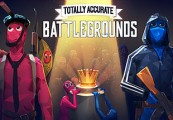 Totally Accurate Battlegrounds Steam CD Key