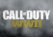Call of Duty: WWII UNCUT EN/DE/JP/RU Languages Only EU Steam CD Key