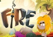 Fire Steam CD Key