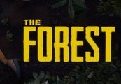 The Forest EU Steam Altergift