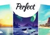 Perfect EU PS4 CD Key