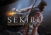 Sekiro: Shadows Die Twice EU Steam Altergift
