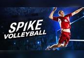 Spike Volleyball Steam CD Key