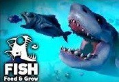 fish feed and grow online game free