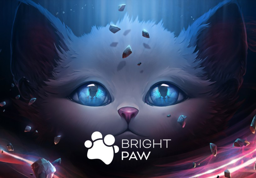 http://www.kinguin.net/ - Bright Paw Steam CD Key
