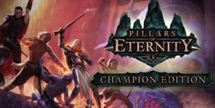 Pillars of Eternity Champion Edition Clé Steam | Kinguin