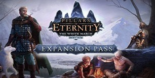 Pillars of Eternity: The White March Expansion Pass Steam CD Key | Kinguin