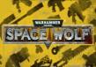 Warhammer 40,000: Space Wolf - Exceptional Card Pack DLC Steam CD Key