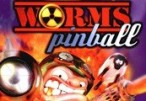 Worms Pinball Steam CD Key
