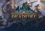 Pillars of Eternity II: Deadfire Steam CD Key
