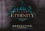 Pillars of Eternity Definitive Edition Steam CD Key
