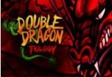 Double Dragon Trilogy Steam CD Key