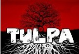 Tulpa Steam CD Key