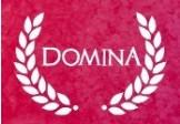 Domina Steam CD Key