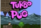 Turbo Pug Steam CD Key
