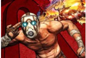 Borderlands Game of the Year Enhanced EU Steam CD Key