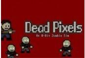 Dead Pixels Steam CD Key
