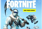 Fortnite Deep Freeze Bundle Epic Games CD Key