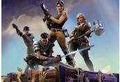 Fortnite: Save the World - Standard Founder's Pack Epic Games CD Key
