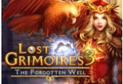 Lost Grimoires 3: The Forgotten Well Steam CD Key