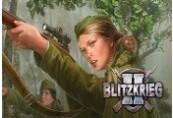 Blitzkrieg 2 Anthology Steam CD Key