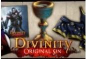 Divinity: Original Sin - Source Hunter DLC Steam CD Key