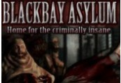 Blackbay Asylum US Steam CD Key