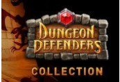 Dungeon Defenders Collection (Summer-Winter 2012) Steam Gift