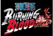 One Piece Burning Blood RU VPN Activated Steam CD Key
