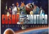 Cosmonautica Steam CD Key
