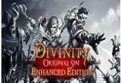Divinity: Original Sin Enhanced Edition Steam Altergift