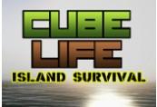 Cube Life: Island Survival Steam CD Key