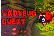 Ladybug Quest Steam CD Key