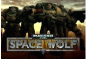 Warhammer 40,000: Space Wolf + Exceptional Card Pack DLC Steam CD Key
