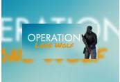 Operation Lone Wolf Steam CD Key
