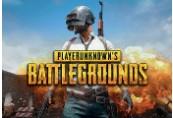 PLAYERUNKNOWN'S BATTLEGROUNDS Steam Altergift