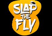 Slap The Fly Steam CD Key