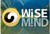 WiseMind Steam CD Key