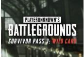 PUBG - Survivor Pass 3: Wild Card DLC Steam CD Key