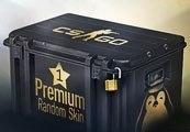 CS:GO 1 Premium Random Skin | Kinguin Case