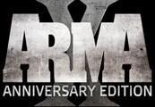 Arma X: Anniversary Edition EU Steam CD Key