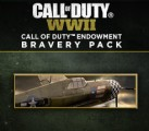 Call of Duty: WWII - Call of Duty Endowment Bravery Pack DLC Steam CD Key