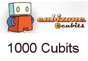 Cubizone 1000 Cubits MALAYSIA
