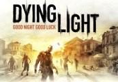 Dying Light - Cuisine & Cargo DLC Uncut Steam CD Key