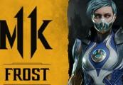 Mortal Kombat 11 - Frost DLC Steam CD Key