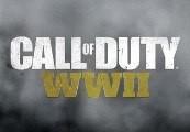 Call of Duty: WWII UNCUT EN/DE/JP/RU Languages Only EU Steam CD Key