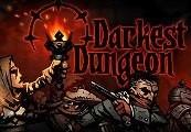 Darkest Dungeon Steam Gift