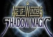 Age of Wonders: Shadow Magic Steam CD Key