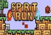 Spirit Run - Fire vs. Ice Steam CD Key