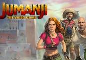 JUMANJI: The Video Game PS4 CD Key